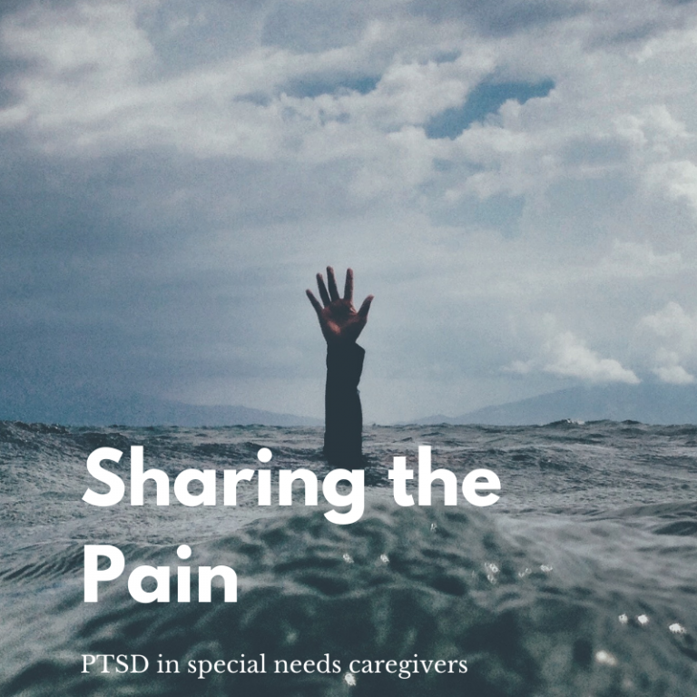 ptsd in special needs parents
